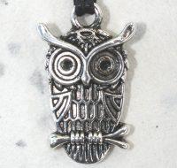 Owl pendant card